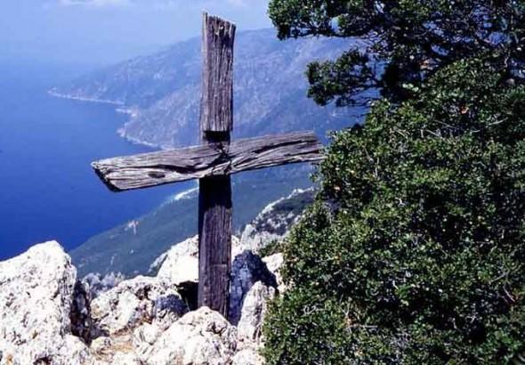 pomul-lemnul-sfanta-cruce