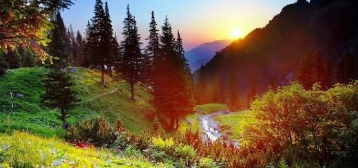 dimineata de munte vara