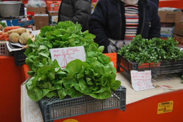 piata-taraba-salata