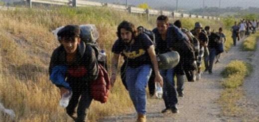 imigranti-sirieni-640x360