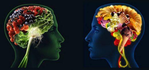 creier-alimentatie