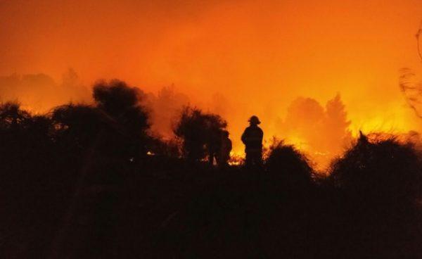israel-incendiu